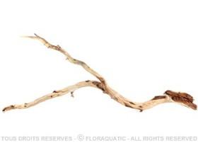 Racine Nue Desert Wood L