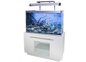 Aquarium Fluval Osaka 260 Glossy Blanc avec meuble