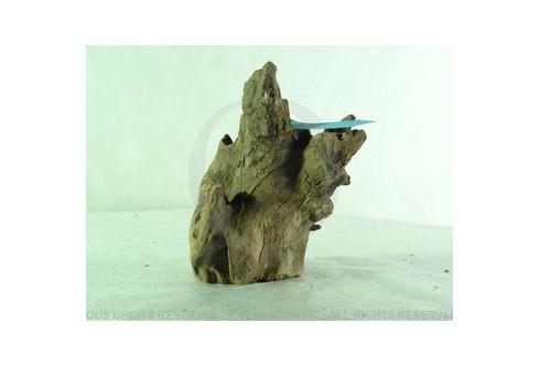 Racine Nue Black Drift Wood RNBDWM1023