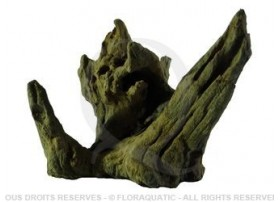 Racine Nue Black Drift Wood M [15 cm - 20 cm]