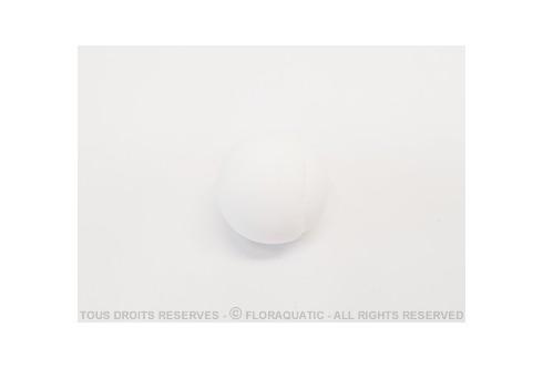 ShrimpHouse - Shrimp Ball