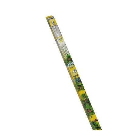 SOLAR ULTRA TROPIC 80W T5 145cm