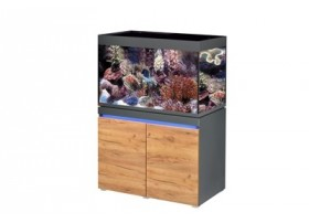 Aquarium INCPIRIA MARINE 330 combi GRAPHIT/NATURE 4 x power LED+