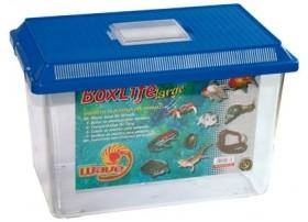 Aquarium BOXLIFE LARGE