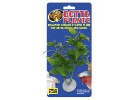 ZOOMED Betta plantephilo