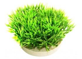 GREEN MOSS H:7cm