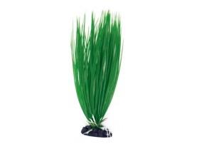 Plante plastique ACORUS - Hauteur : 12cm