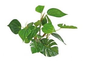 Plante plastique ANUBIAS - Hauteur : 20cm