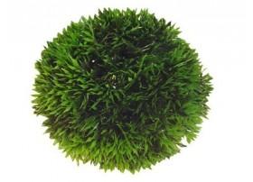 Plante plastique ball 9 cm - HOBBY