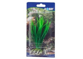 Plante cyperus 16 cm - en plastique - HOBBY