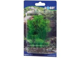 Plante egeria 13 cm - en plastique - HOBBY