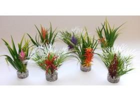 Plante plastique hauteur : 10 cm