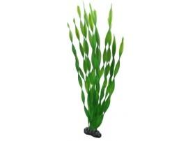 HOBBY Plante vallisneria 46 cm