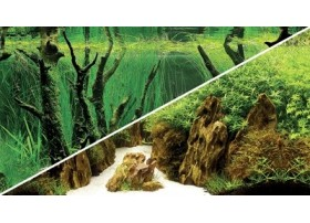 Poster Canyon / Woodland 120x50cm DF HOBBY