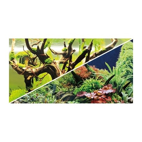 HOBBY Poster green secret / wood island 0.5x25m df