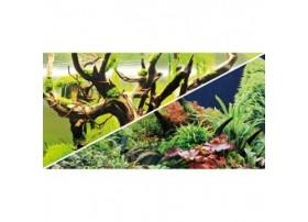 HOBBY Poster green secret / wood island 100x50cm df