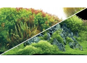 HOBBY Poster planted river / green roches 120x50cm df