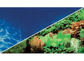 HOBBY Poster plantes 8 / marin blue 0.6x25m df