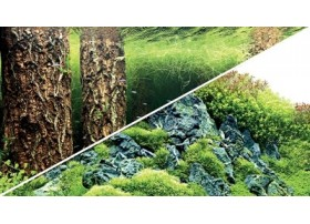 HOBBY Poster scaper's hill / scaper's forest 100x50cm df