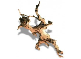 Racine de vigne 30 à 45cm 1p