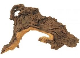 HOBBY Racine monpani l 35-50cm