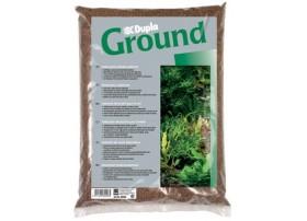 GROUND 8L