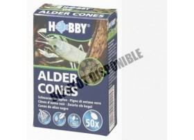 HOBBY Alder cones 50pc