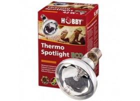 HOBBY Ampoule thermo spotlight eco halogène 70w