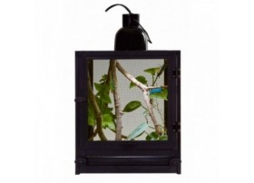 ZOOMED Nano breeze (terrarium insecte)