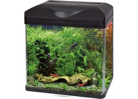 Aquarium équipé LAGUNA LED 40 - noir 22L