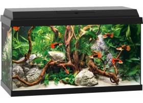 JUWEL Aquarium primo 60 - noir60L