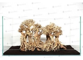 Layout Forest S L40 X H30Cm