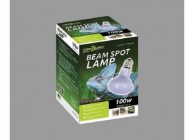Lampe Chauffante Beam Spot 100W - Reptizoo