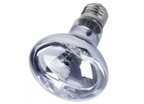 Lampe Neodium Daylight 100W - Reptizoo