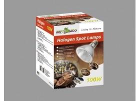 Lampe Spot Halogene 100W - Reptizoo