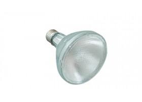 Lampe Spot Halogene 50W - Reptizoo