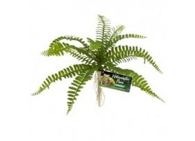 Plante plastique Sword Fern - Reptizoo