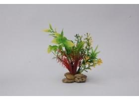 PLANT H:15cm SCALARE