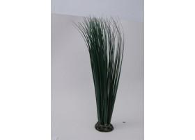 PLANT H:46cm SCALARE