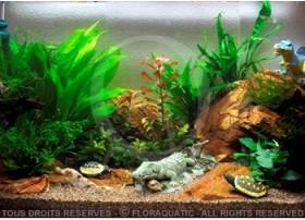 L'aquarium pour enfants (112L) by Tropica