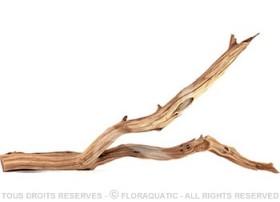 Racine Nue Desert Wood S