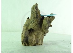 Racine Nue Black Drift Wood RNBDWM1023