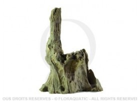 Racine Nue Black Drift Wood L [25 cm - 40 cm]
