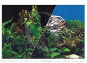 Décor de fond recto-verso Plantes / Noir - Hauteur 40 cm Longueur sur mesure