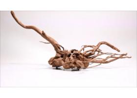 Racine Dark Moor Roots L1032
