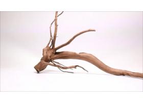 Racine Dark Moor Roots L1043